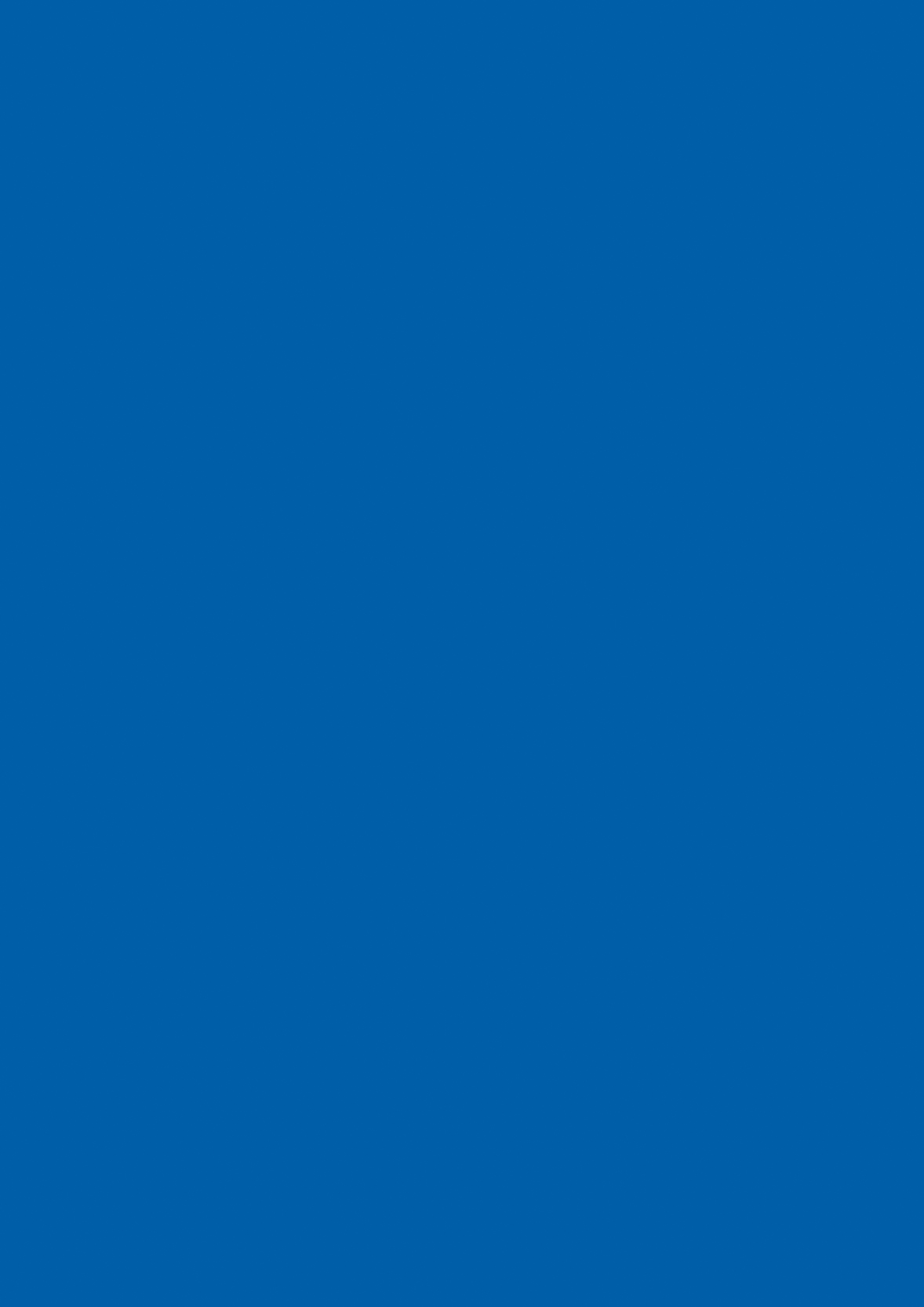 Bleu Flash